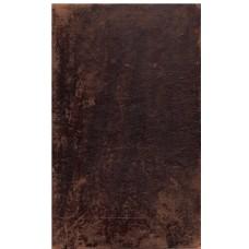Brevet til de Romere, til opbyggelse i Tro og Endelighed (2 bind)