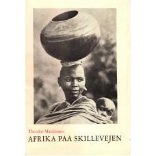 Afrika på skillevejen